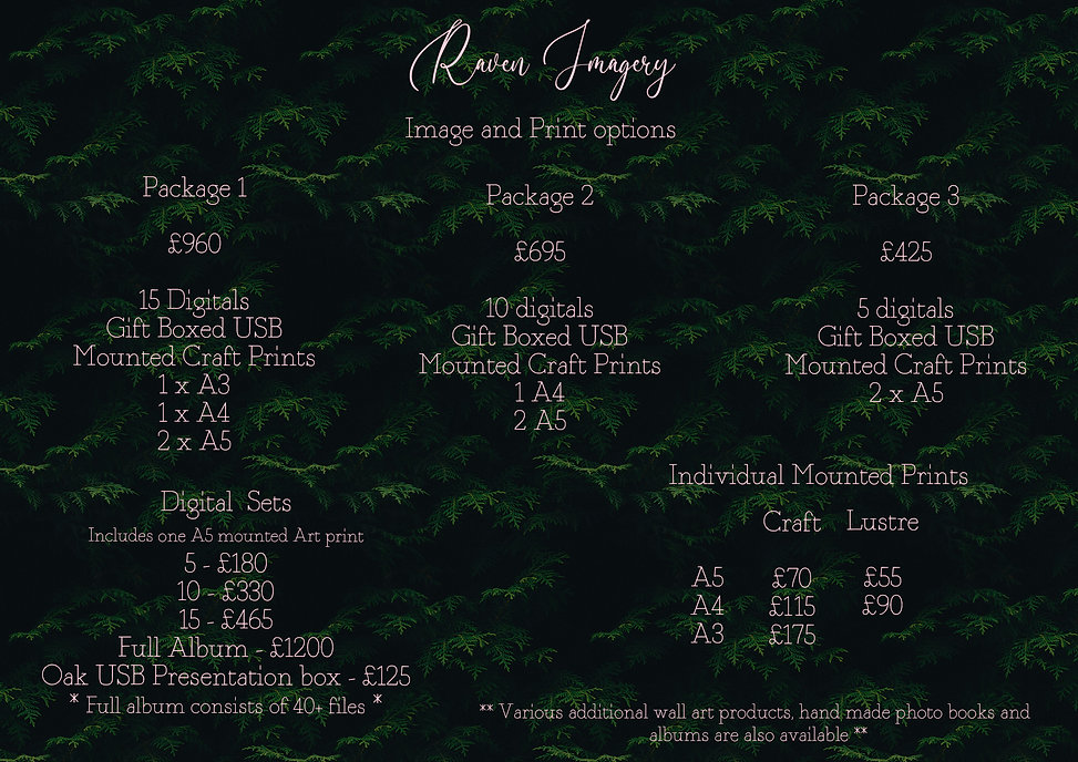 Price List Ferns - 2021 copy.jpg