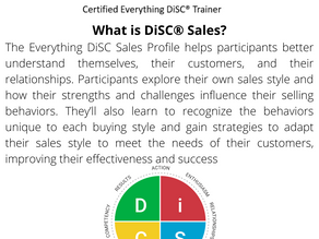 What is DiSC® Sales?