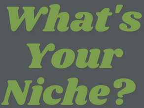What is Your Niche?