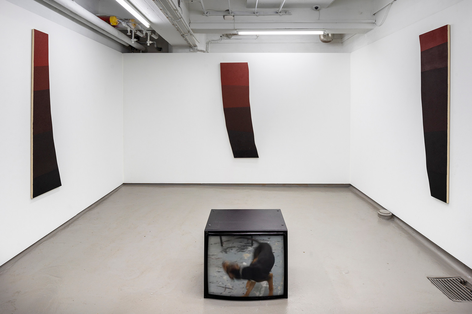 Soul Swallower. V1 Gallery, Copenhagen 2019
