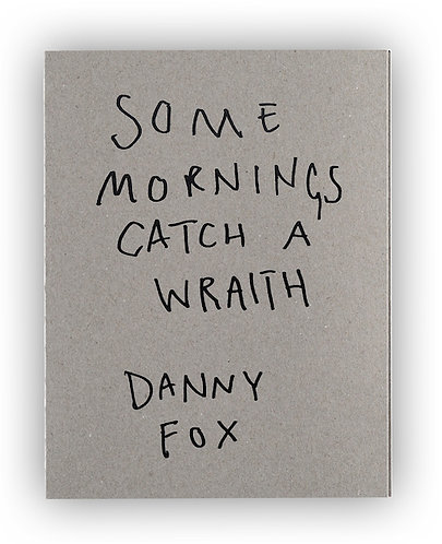 Danny Fox / Some Mornings Catch a Wraith
