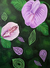 Clitoria flowers, pea flowers and leaves