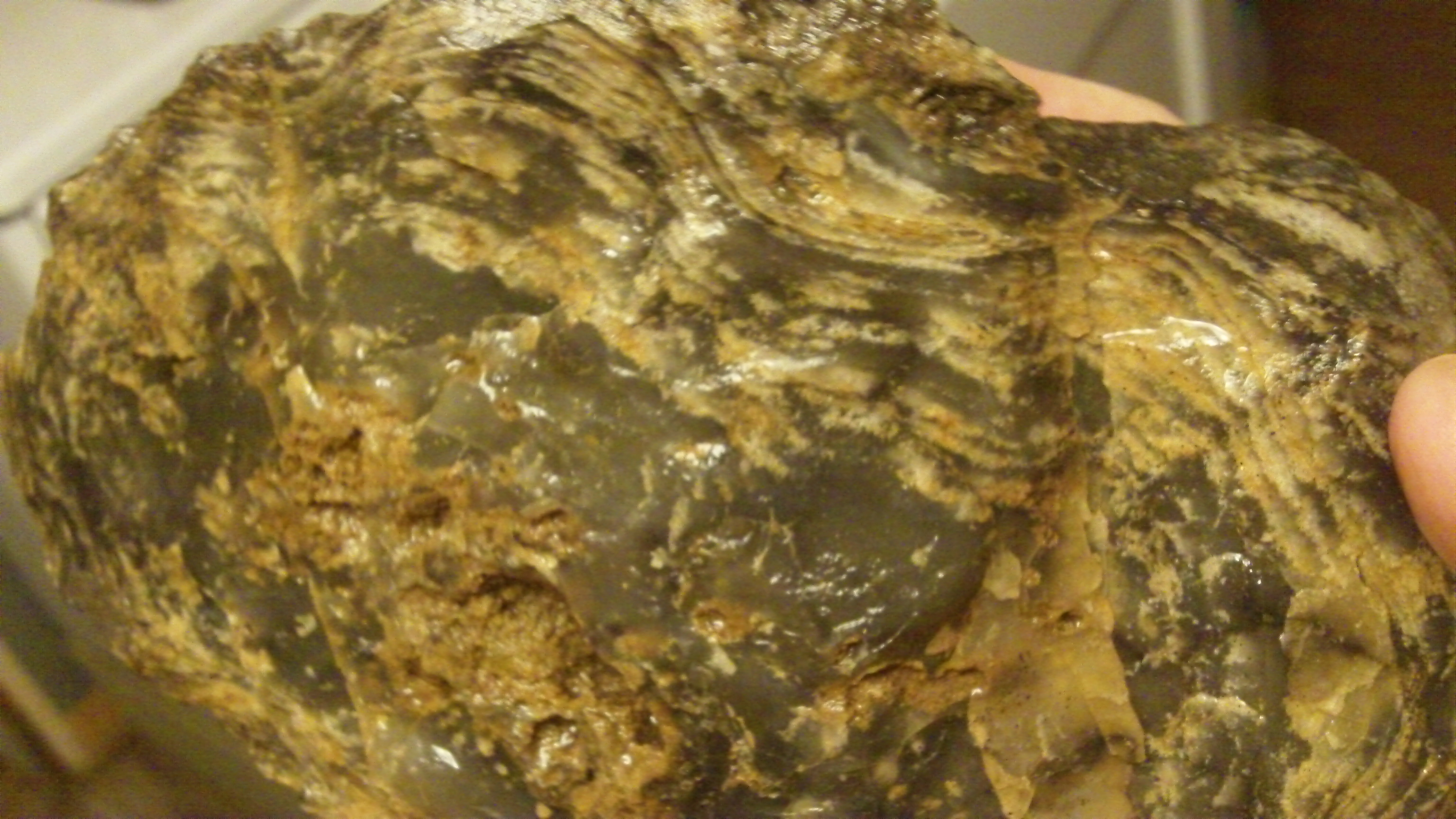 Large Agate Close-Up