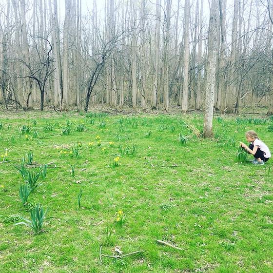 Breathe Into Spring
