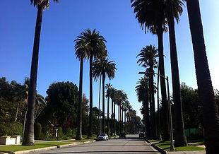 beverly-hills-california-los-angeles.jpg
