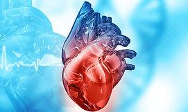 site-cardiologia01.jpg