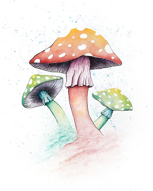 Watercolor Toadstool Mushrooms by Jordan Ellis