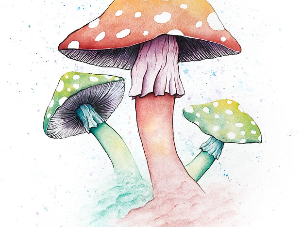 Mushrooms8x10.jpg