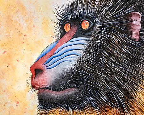 Watercolor Mandrill by Jordan Ellis