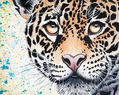 Watercolor Jaguar by Jordan Ellis