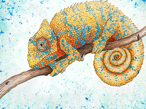 Chameleon Watercolor Painting