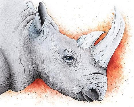 Watercolor Rhino by Jordan Ellis