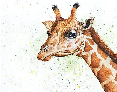 Watercolor Giraffe by Jordan Ellis