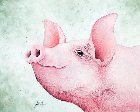 Watercolor Pig by Jordan Ellis