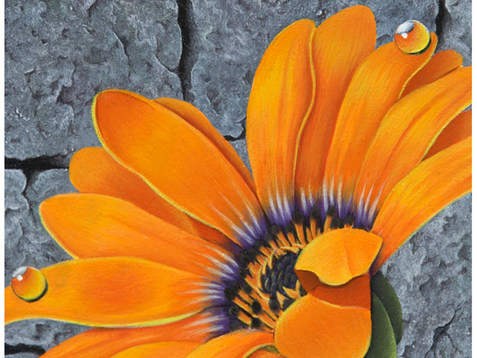 Daisy Acrylic