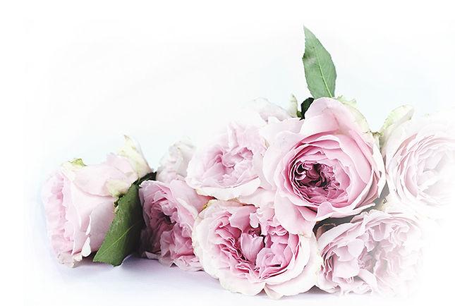 TLAM-roses.jpg