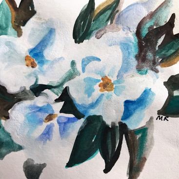 Colleen Magnolias