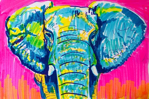 Marker Elephant Print