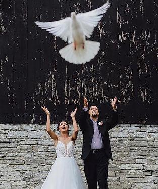 heavenly doves2