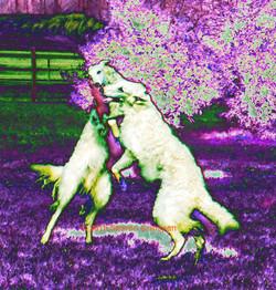 Dancing Dogs Under Purple Trees