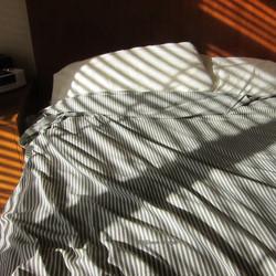 Study in Stripes
