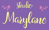 "Студия ""Marylane"" (скульптуры из книг)"