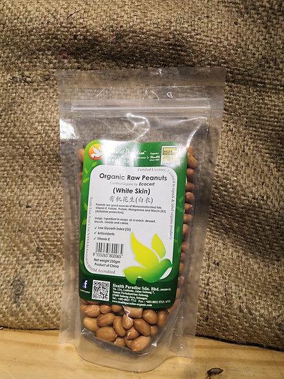 Organic Raw Peanuts (White Skin)