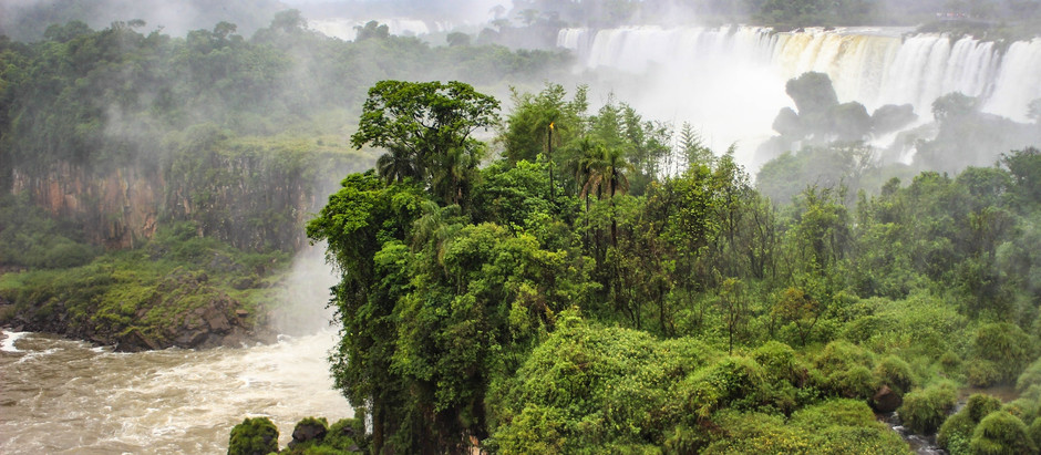 The Open Amazon and its Enemies: A Call for Action and Optimism