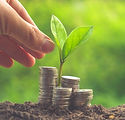 Money-and-plant-with-hand-000075025475_L