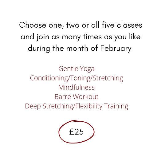 February Fitness Pass