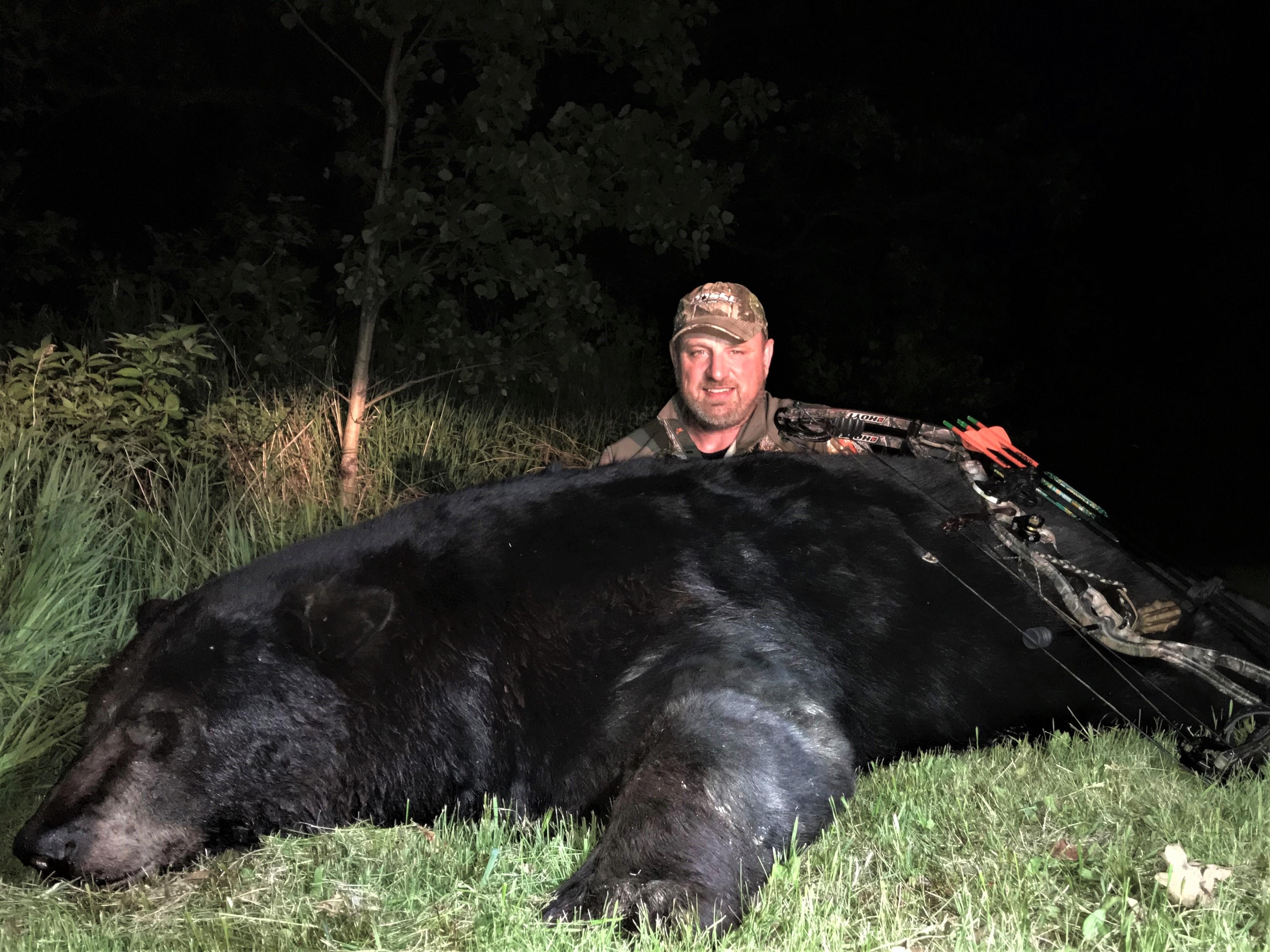 Bear 20 05 R Mehling