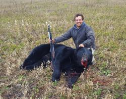 Bear 20  8 Penner