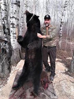Bear 19 04 Magnus E