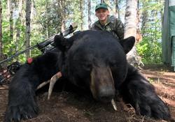 Bear 20 03  Osborn Zayne