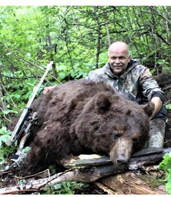 Bear 19 14 Culvier