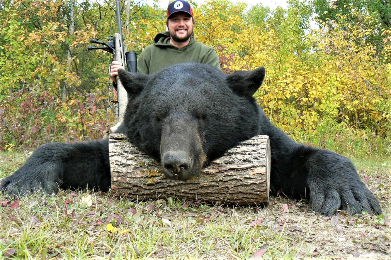 Bear 19 07 Turner