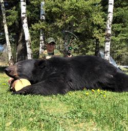 Bear Y 20 12 Olson N
