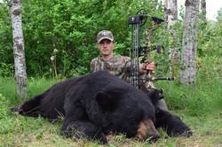 Bear Y 19 13 Bossuyt