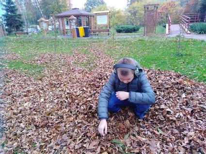 Las przy szkole