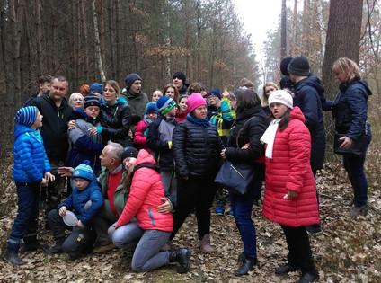 Lecznicze właściwości lasu