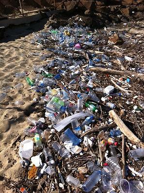 CORPORATE_TEAM_BUILDING_environmental_outdoor_voluteering_sustainable_plasticpollution_mic