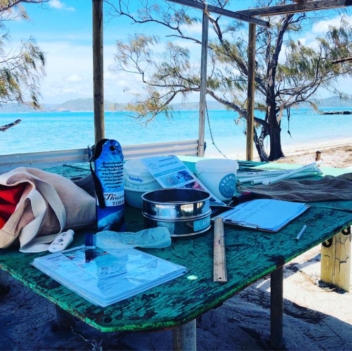 Photo by M. Blewitt: Field sampling on Goods Island, Torres Strait