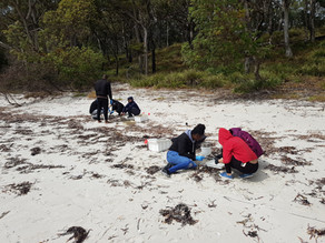 Students take on microplastics in Jervis Bay