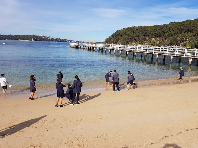 Students from James Busby High School at Athol Beach collecting water and sand