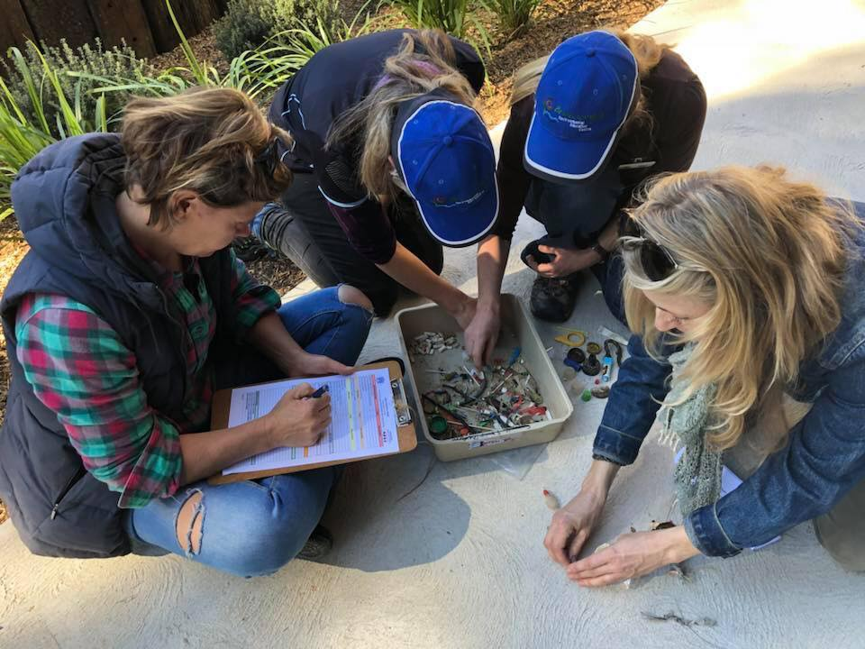Sorting and recording the microplastics
