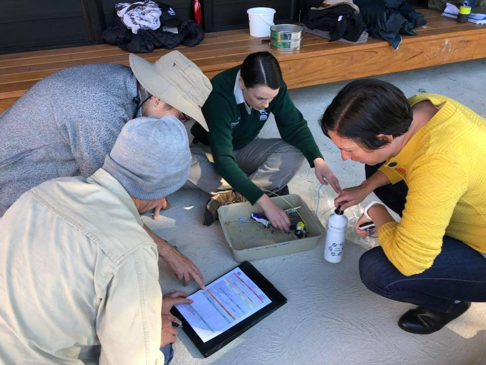 Sorting and identifying macro and microplastics found in the sample