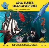 AUSMAP_sponsor_aqua-Clares-ocean-adventure.jpg