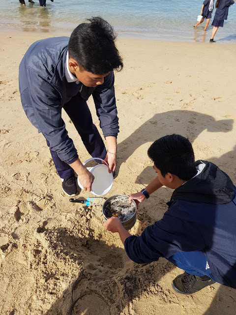 When sand is wet, adding water will help the sand sift through the sieves, leaving microplastics