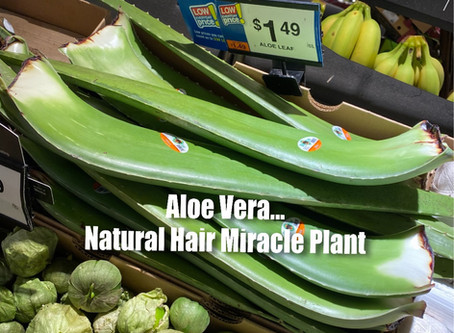 ALOE VERA....Is That You?!?!