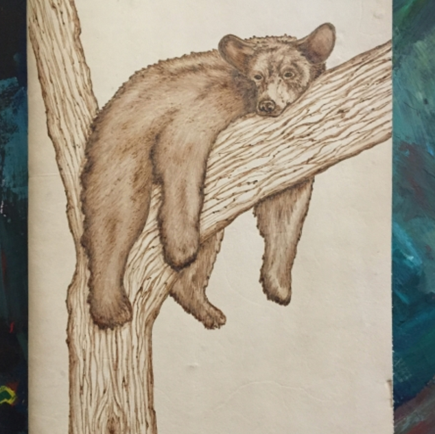 BearInTree.png
